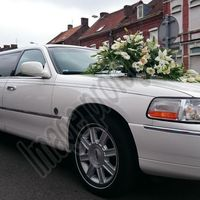 jet7limo - Lille - Location limousine pulse cafe
